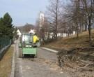 Forstarbeiten-02-2011-IMG_0498