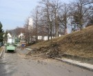 Forstarbeiten-02-2011-IMG_0501