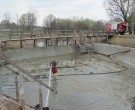 Reinigung-Teich-2011-IMG_0020