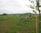 Baumpflanzung-2011-DSC00529