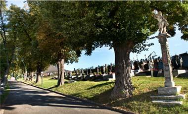 Bild vom Friedhof Rohrbach bei Mattersburg. Foto von www.digitalimage.at
