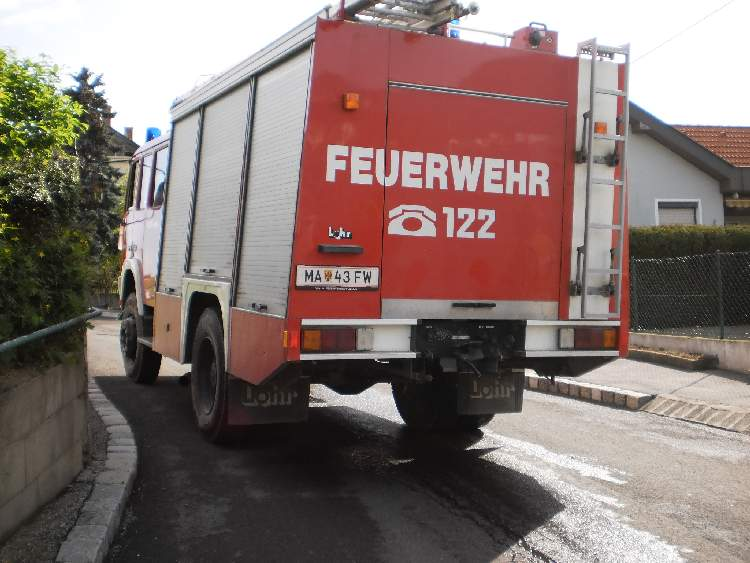 Floriani 2013