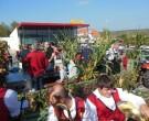 MVRohrbach_Erntedankfest_2014-035